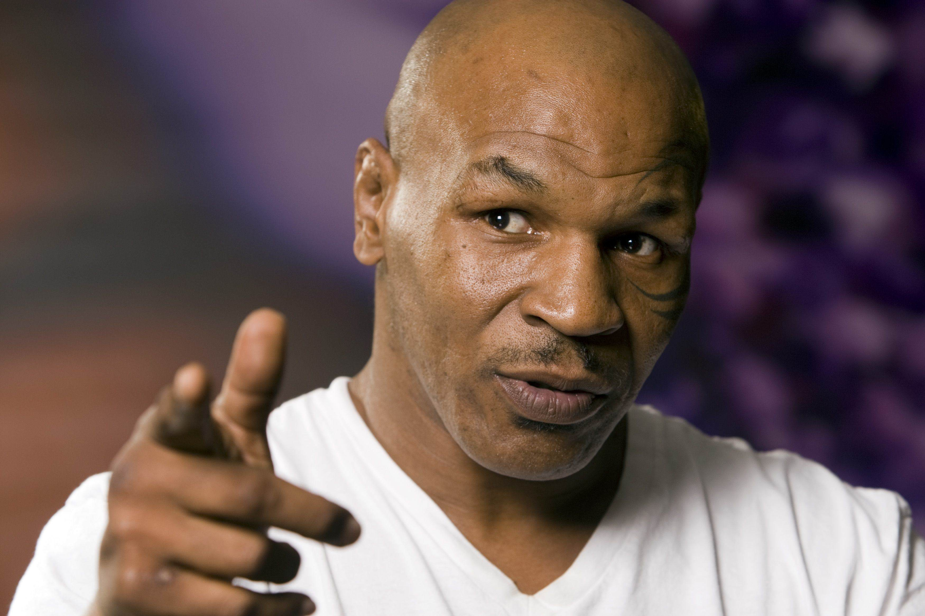 Steve O And Mike Tyson Once Went On A Wild Cocaine Session Mike Tyson 660 Reuters