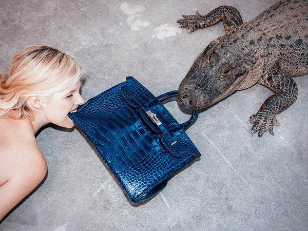 This Photograph Is Turning Americas Racist History On Its Head birkin alligator tyler shields3