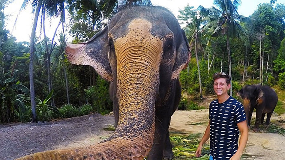 Elephant Steals Lads Camera And Takes Epic Selfie elfie