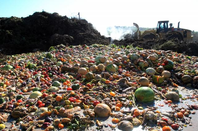 Sign Our Petition To Force Supermarkets To Donate Unsold Food food waste 2 640x426