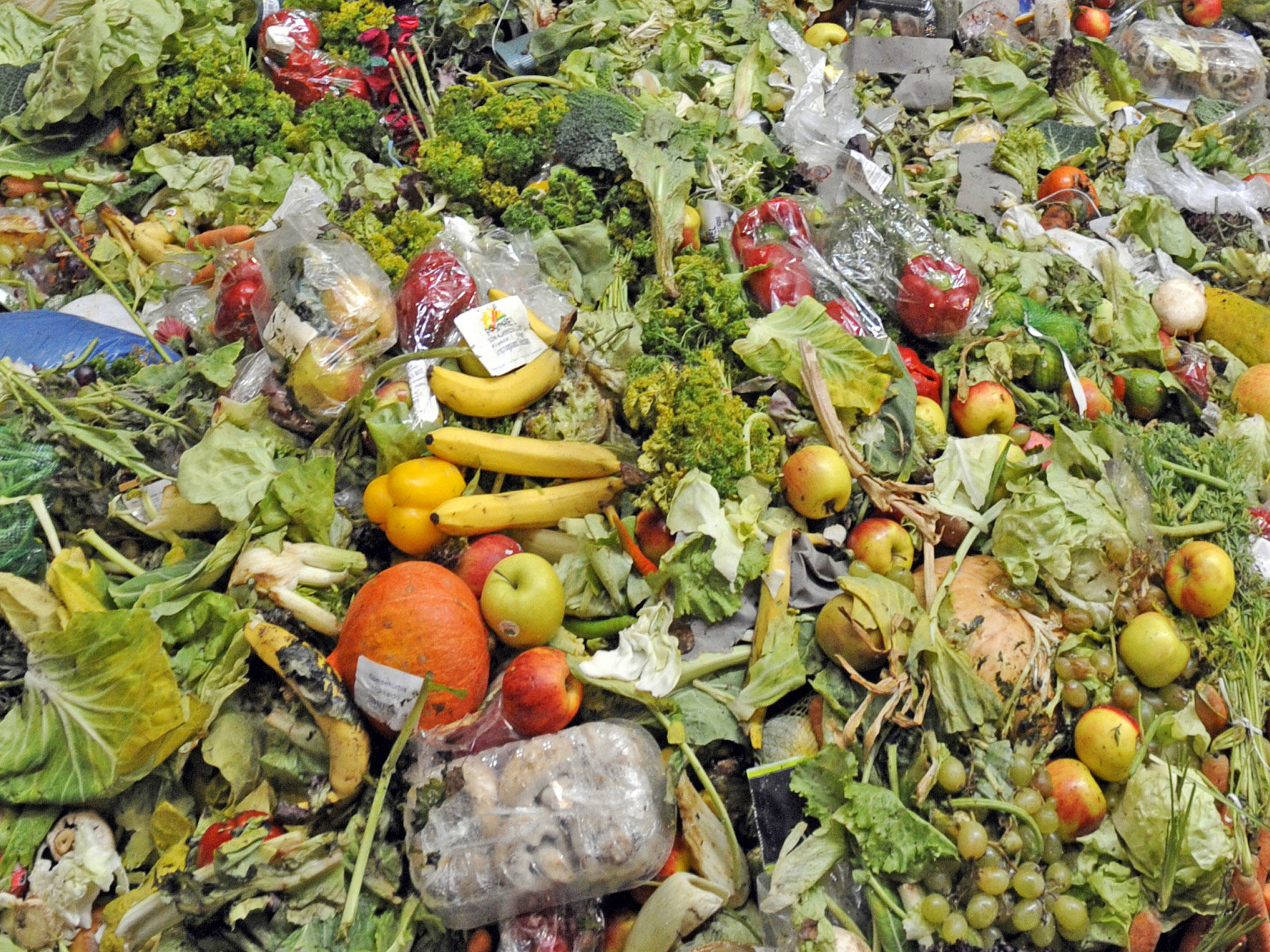 Sign Our Petition To Force Supermarkets To Donate Unsold Food foodwaste blog