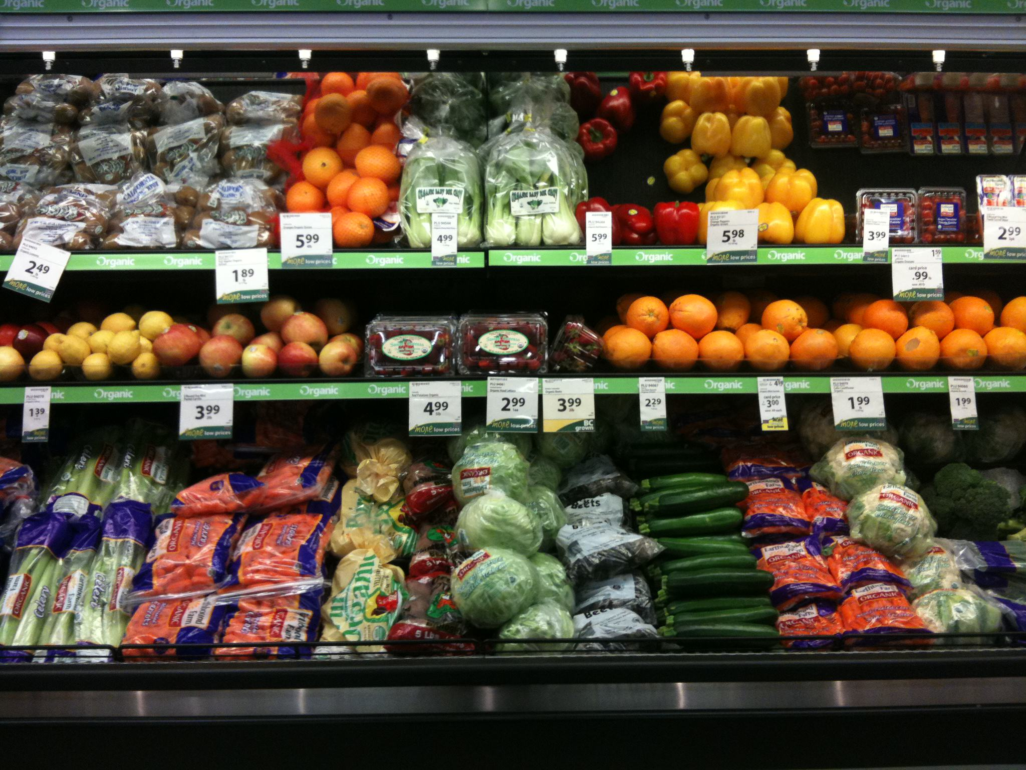 Sign Our Petition To Force Supermarkets To Donate Unsold Food img 0459