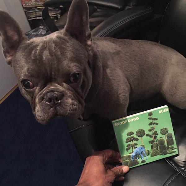Snoop Doggs Dog Has Instagram And His Life Is Better Than Yours snoop4
