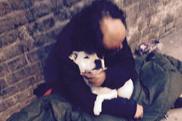 Homeless Man Reunited With His Dog After Fake Policeman Stole It treacle dog