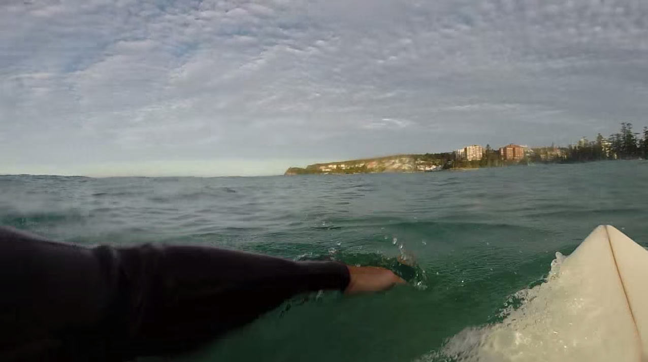 Surfers GoPro Captures Great White Shark Circling Him In Sydney 1128