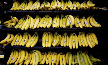 Mum Finds Nest Of Worlds Deadliest Spider In Tesco Bananas Bananas at Tesco 009