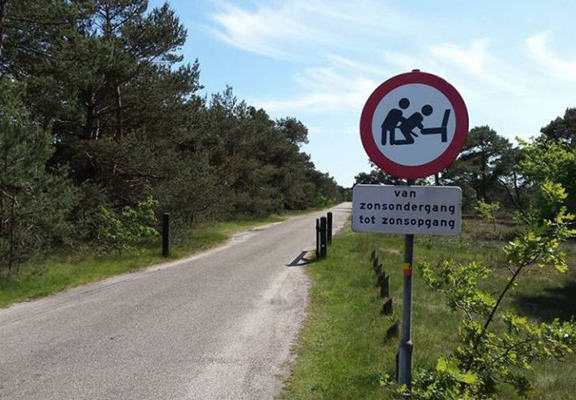 Road Sign Altered At Popular Dogging Hotspot And Its Shocking The Locals dogginh web