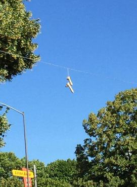 In Portland, People Are Dangling Dildos From Power Lines 315