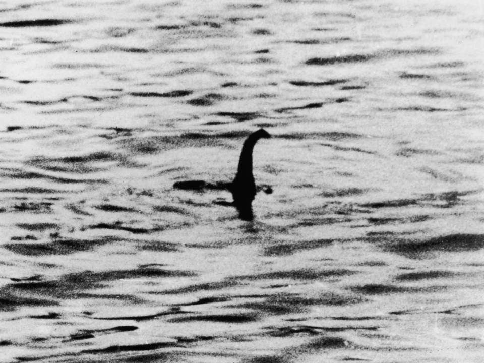The Loch Ness Monster Is Most Likely A Large Catfish 3422579 1 960x720