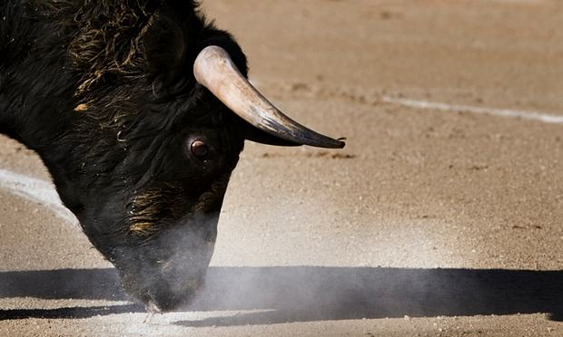 Spanish Town Cancels Bullfighting To Spend Money On Something More Sensible 55b7acd4c18e2