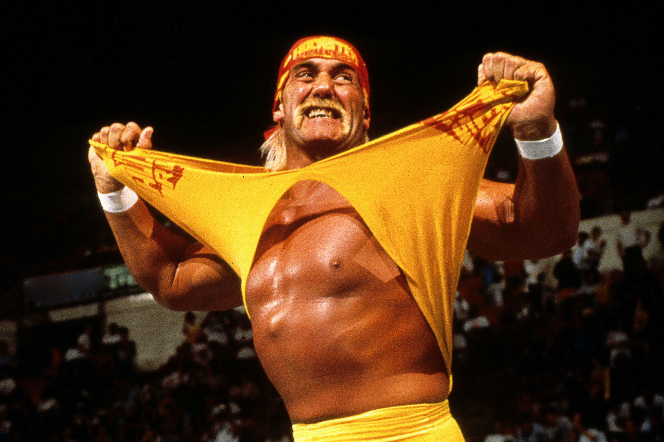 The WWE Has Wiped Hulk Hogan From Pretty Much Everything Expendables 4 Hulk Hogan pourrait etre le mechant du film