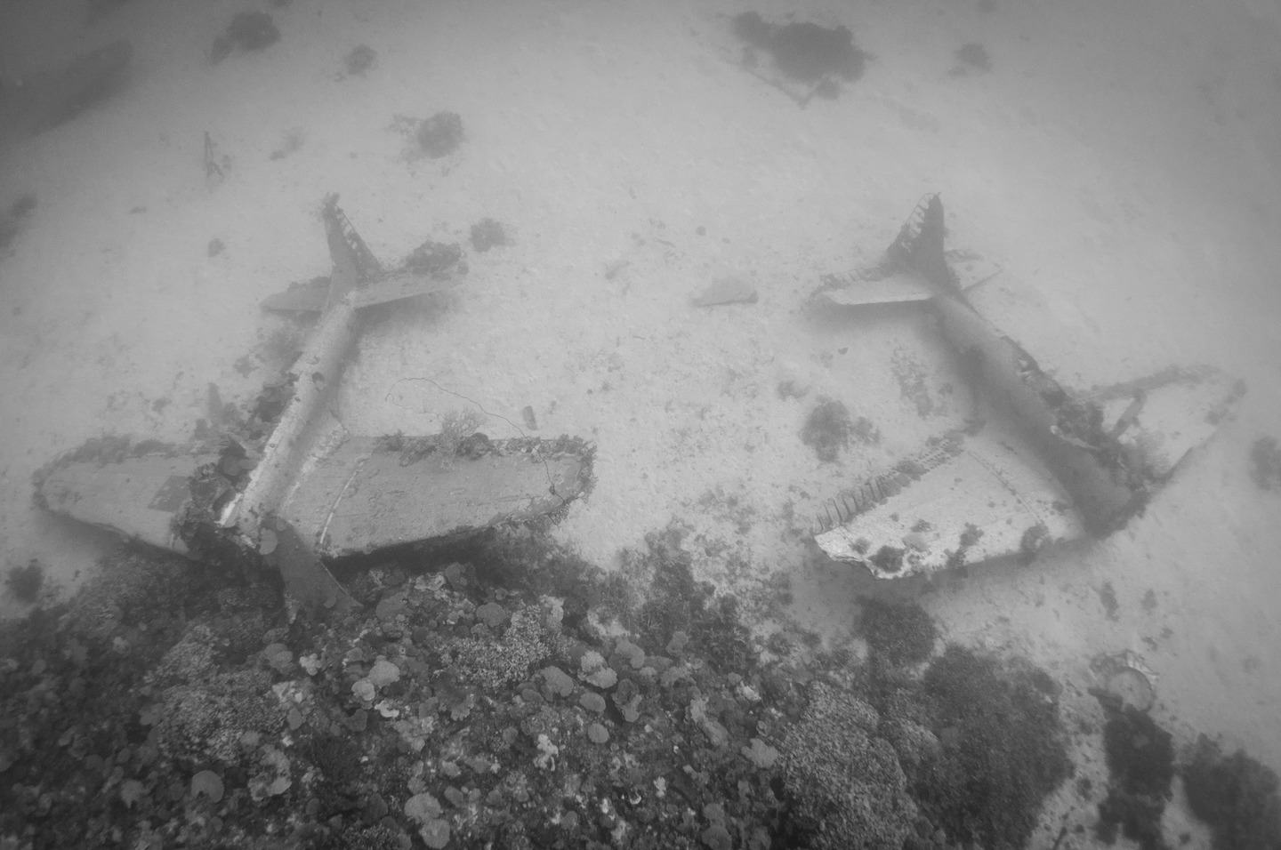 The Pacific Ocean Bed Is A Graveyard For World War II Planes  dsc0239