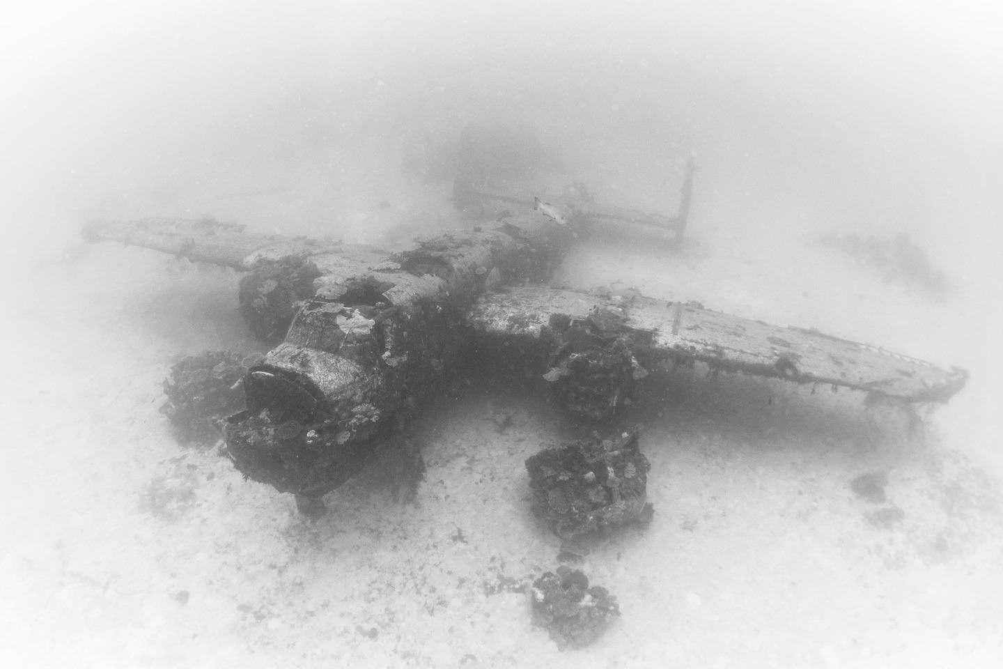 The Pacific Ocean Bed Is A Graveyard For World War II Planes  dsc8704 2
