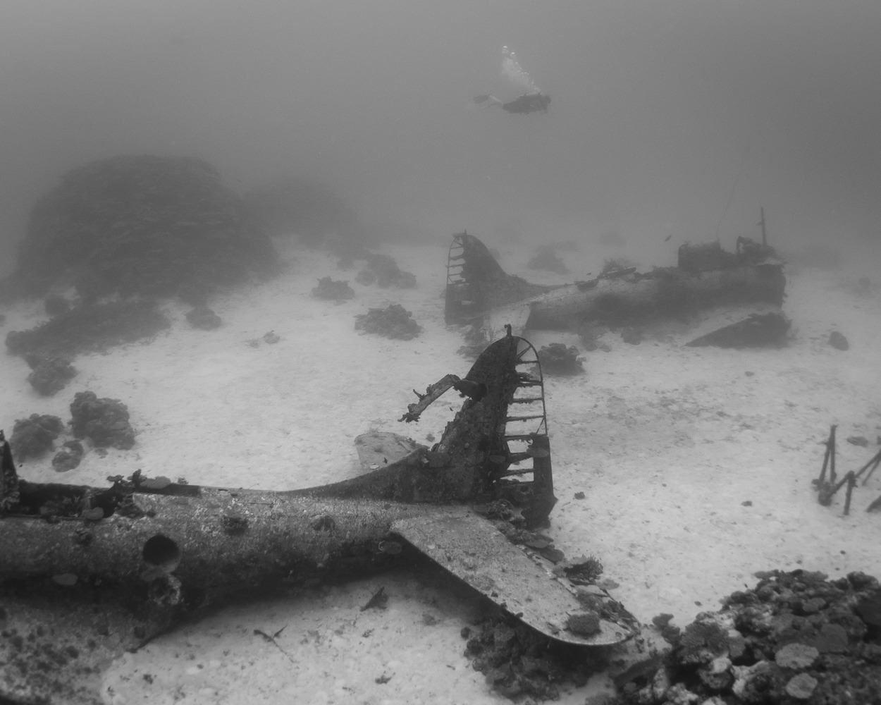 The Pacific Ocean Bed Is A Graveyard For World War II Planes dsc 4588