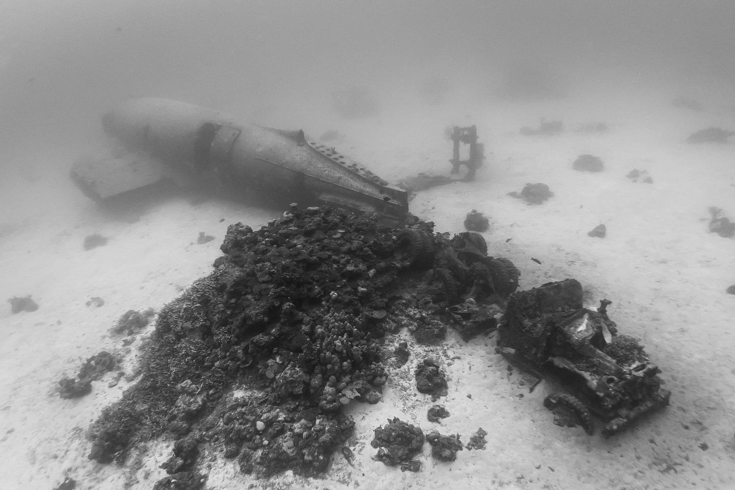 The Pacific Ocean Bed Is A Graveyard For World War II Planes dsc 4598
