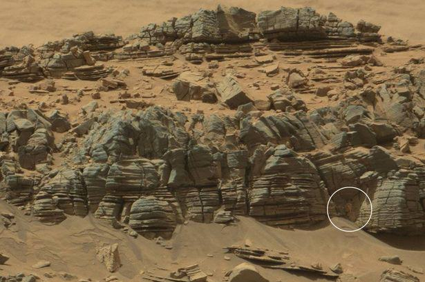 NASA Spot Something Crab Like On Mars And People Are Going Mental HxDnNWavs