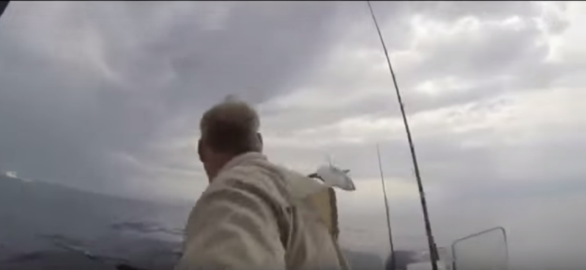 Moment Shark Jumps 12 Feet Out Of Water, Terrifying Fisherman UNILAD NmNPfl5