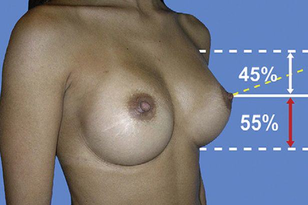 Science Has Discovered What The Perfect Pair Of Boobs Look Like, Apparently UNILAD Perfect boobs science formula4