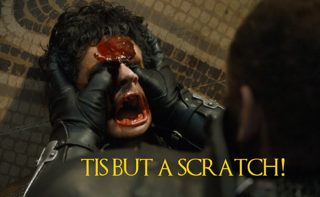 These Game Of Thrones Moments With Quotes From Monty Python Are Amazing UNILAD Robin Edds BuzzFeed HBO 52