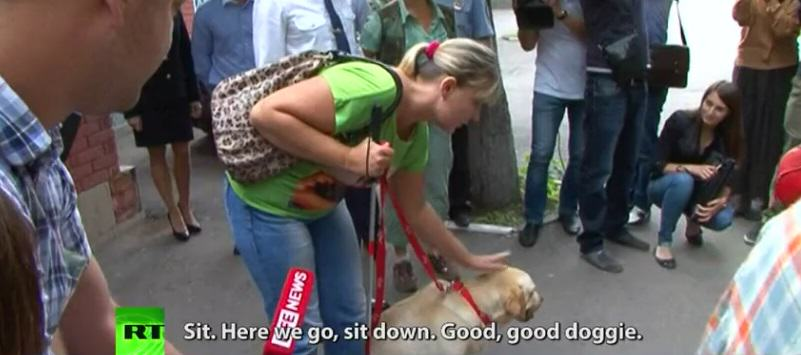 A Happy Reunion As Stolen Guide Dog Is Returned To Blind Owner After An Online Search Campaign UNILAD SavP4g