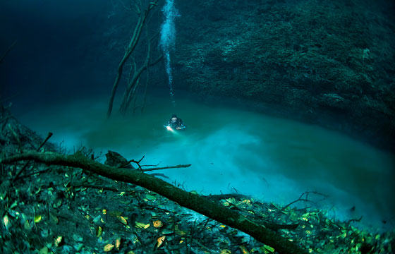 Diver Discovers Incredible Underwater River In Mexico UNILAD diver24