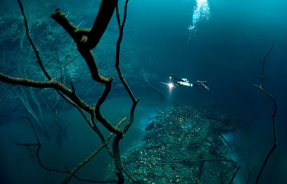 Diver Discovers Incredible Underwater River In Mexico UNILAD diver35