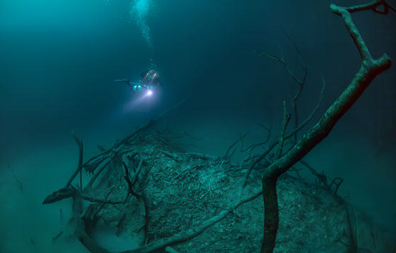 Diver Discovers Incredible Underwater River In Mexico UNILAD diver62