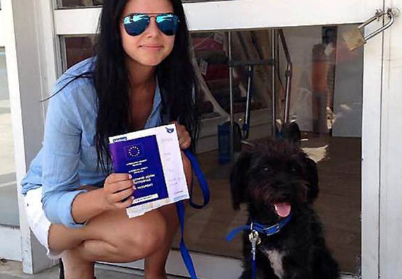 Woman Files Back To Greece To Rescue Dog Who Saved Her From Attack UNILAD dogg web3