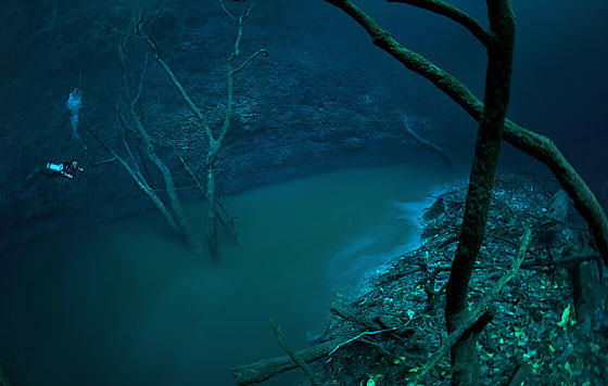 Diver Discovers Incredible Underwater River In Mexico UNILAD iver52