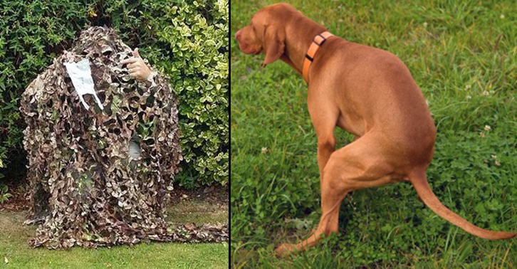 Poo Police   This Bloke Secretly Films Dog Owners That Dont Pick Up After Their Pooch YOntSVy5U