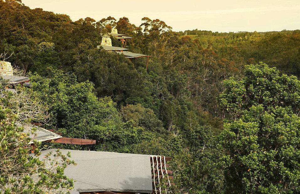 This Treetop Lodge In South Africa Is The Only Place I Want To Be, Ever gft5beJTq