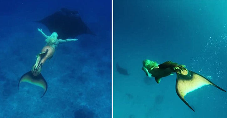 Real Life Mermaid Swims With Sea Life, Can Hold Breath For 5 Minutes hFQr716gamermaid melissa FB.jpg