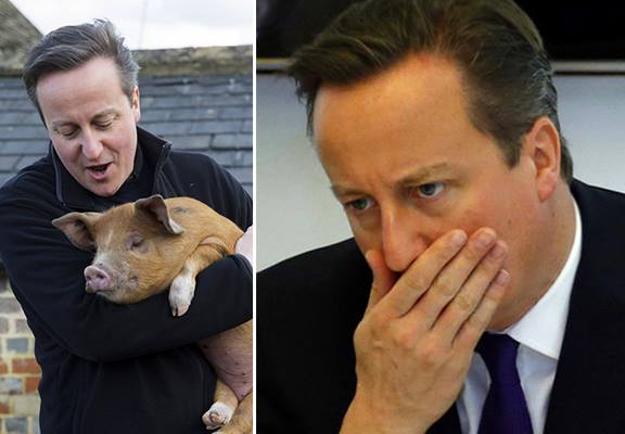The Internet Reacts To David Cameron Putting His Knob In Dead Pigs Mouth 12029182 10153080115946631 1534001378 n1