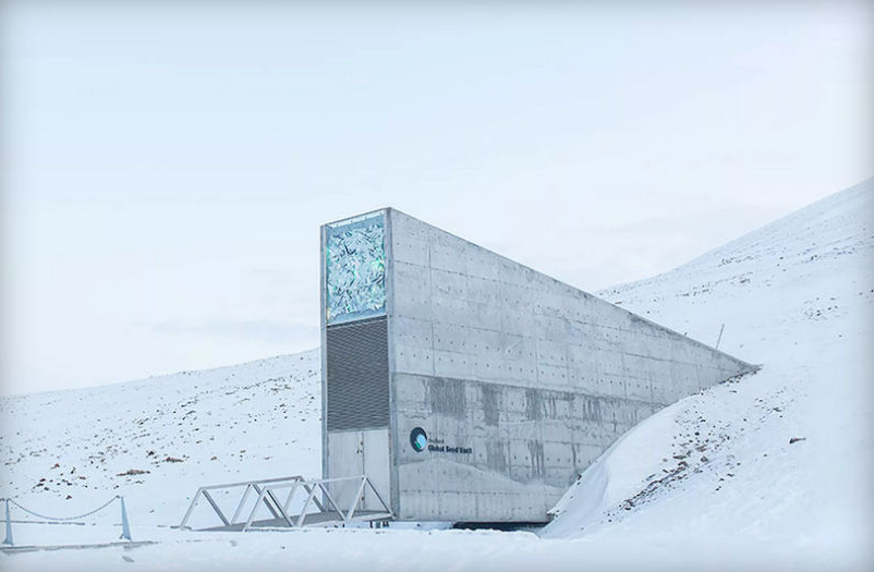 Crisis In Syria Forces The Worlds Doomsday Vault To Access Its Stores Screen Shot 2015 09 23 at 22.30.19