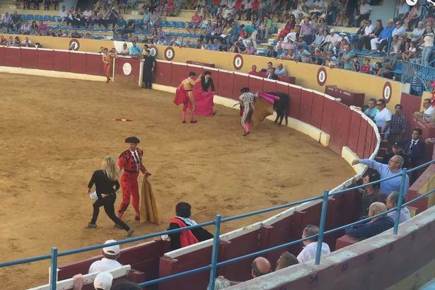 Swedish-porn-star-jumps-into-bullfighting-ring-to-comfort-wounded-animal PETA