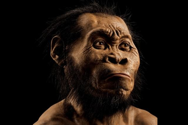 Huge Discovery As New Species Of Human Found In South Africa UNILAD 01 ngm 1015 MM8345 mystery man mark thiessen4
