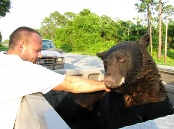 Amazing Story Of Brave Man Who Saved The Life Of A Black Bear UNILAD 721