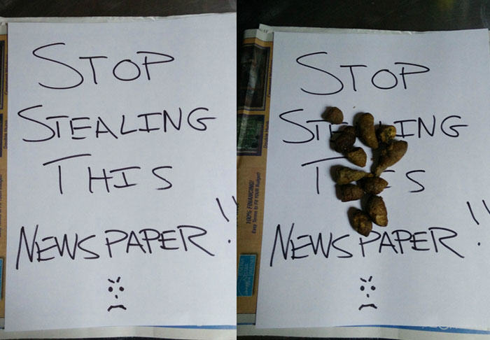 Man Comes Up With Cunning Way To Stop Neighbour Stealing Newspaper UNILAD thief15