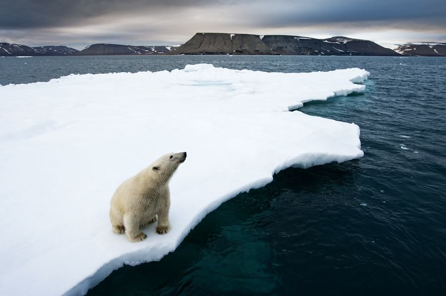 Are These Photos Proof That Global Warming Is Destroying The Planet? UNILAD tumblr mjowtekkTK1qij426o1 12806