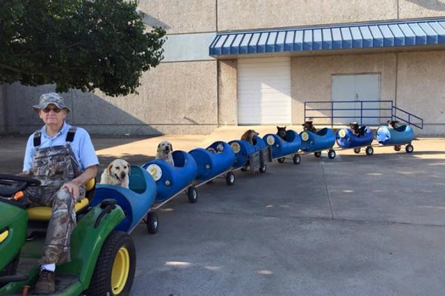 Eugene, 80 Years Old, Has Built A Train For His Adopted Stray Dogs eugene1 640x426
