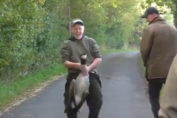 Sick Video Shows Fox Hunt Steward Simulating Sex With Dead Goose goose video 2