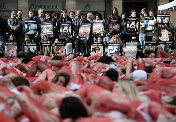 Underwear Clad Vegan Activists Cover Themselves In Blood On Paris Streets vegan blood WEB 3