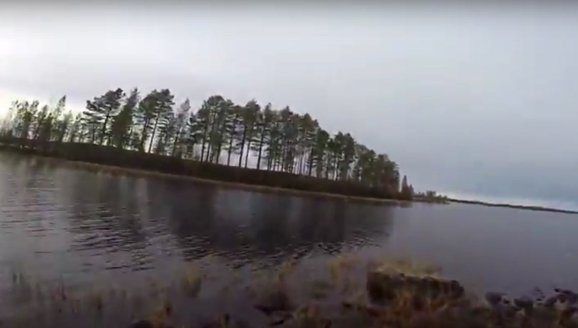 Swedish Hunter Jumps Into Partly Frozen Lake To Save His Dog UNILAD 672110