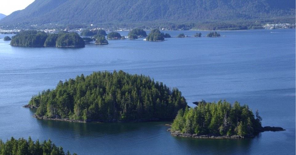 You Can Literally Buy These Private Islands For Less Than £250K UNILAD Aleutkina Island6