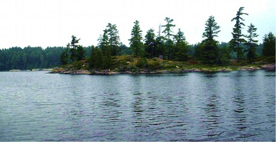 You Can Literally Buy These Private Islands For Less Than £250K UNILAD Deer Bay French River Island 26