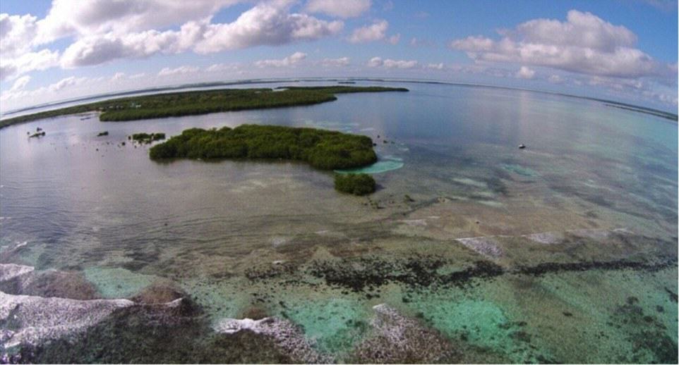 You Can Literally Buy These Private Islands For Less Than £250K UNILAD Frigate Caye 22