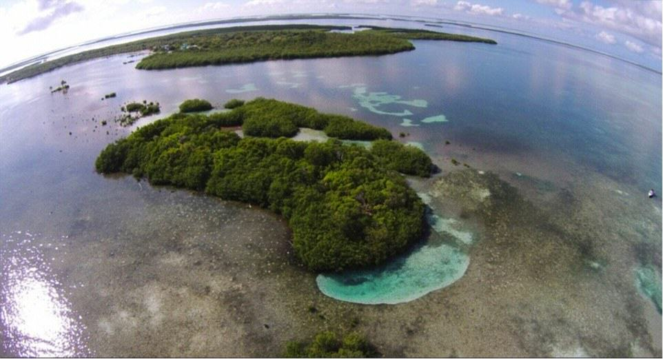 You Can Literally Buy These Private Islands For Less Than £250K UNILAD Frigate Caye7