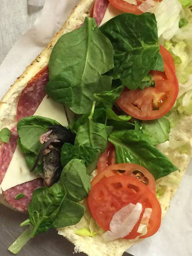 Guy Asks For Extra Spinach At Subway, Gets Dead Rat Instead UNILAD Mouse in subway5