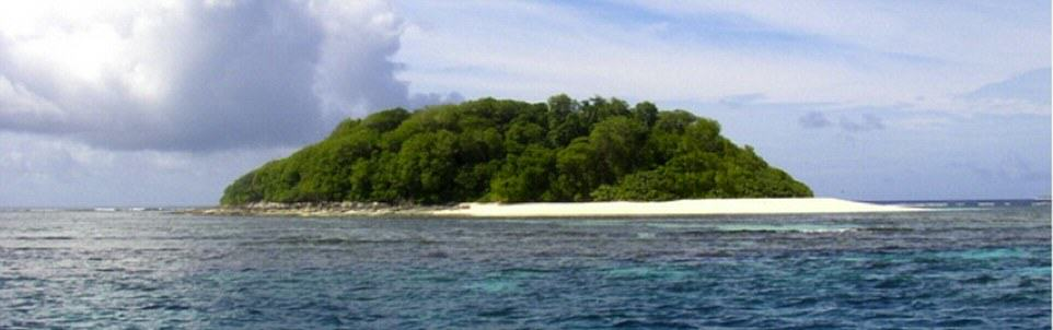 You Can Literally Buy These Private Islands For Less Than £250K UNILAD Tahifehifa Island8
