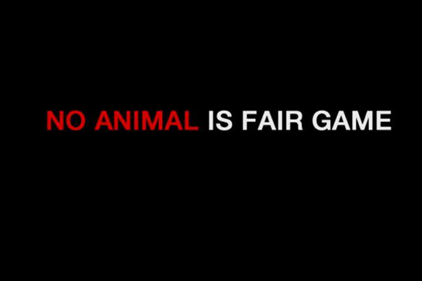 Hard Hitting Anti Hunting Video Campaign Replaces Cecil The Lion With Dog UNILAD anti hunting campaign 284648